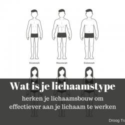lichaamstype