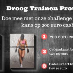 dtp-12-weken-challenge