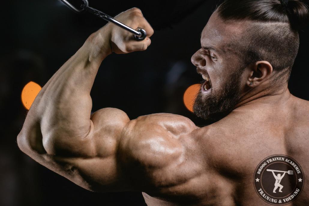 biceps-curl-kabel