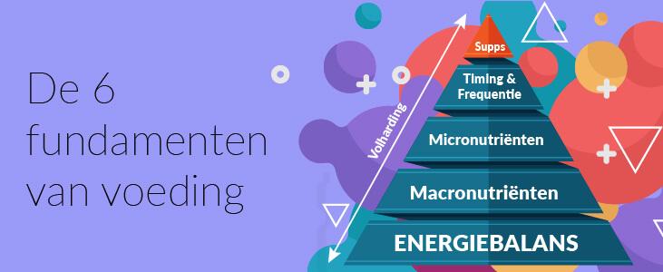 6-fundamenten-van-voeding