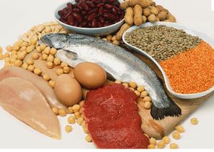 voedingsschema-eiwitten