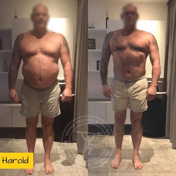 Droog Trainen Academie Transformaties Harold